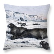 Walruses On Ice Field Throw Pillow