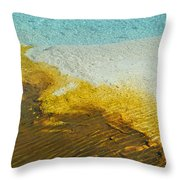 Warm Beauty Throw Pillow