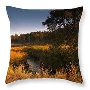 Warm Morning Sun. The Trossachs National Park. Scotland Throw Pillow