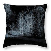 Warming Light On An Autumn Morning Throw Pillow