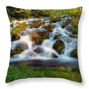Wasatch Range Cascade Throw Pillow