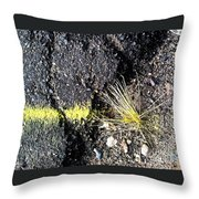 Wash Day One Throw Pillow