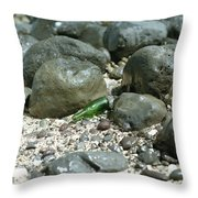 Washed Ashore In Hawaii Throw Pillow