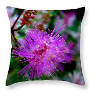 Watch For The Claw Throw Pillow