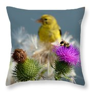 Watchful Eye - Cropped Throw Pillow