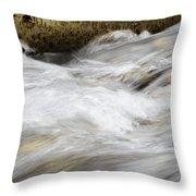 Water 2 Throw Pillow