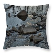 Water And Woods Throw Pillow