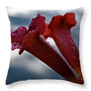 Water Beaded Trumpets Throw Pillow