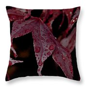 Water Beads Of Red Throw Pillow