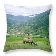 Water Buffalo Boy Throw Pillow