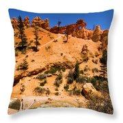 Water Canyon Dragon Throw Pillow