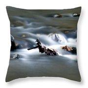 Water Cascades Throw Pillow