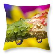 Water Drops On A Budding Flower Throw Pillow