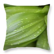 Water Drops On Green Leaf Throw Pillow