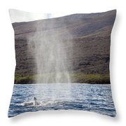 Water From A Whale Blowhole Throw Pillow