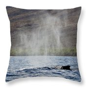 Water From A Whale Blowhole II Throw Pillow