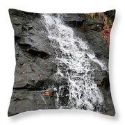 Water Goddess Throw Pillow