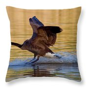 Water Landing Throw Pillow