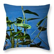 Water Lilies No.098 Throw Pillow