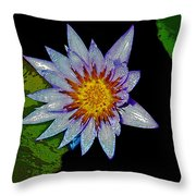 Water Lilly Paint Throw Pillow