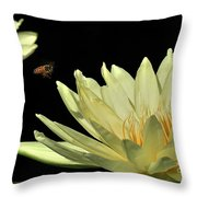 water lily 3 Yellow Water Lily with Bee Throw Pillow