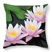 water lily 88 Sunny Pink Water Lily with Reflection Throw Pillow