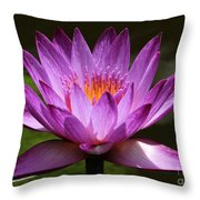 Water Lily Blossom Throw Pillow