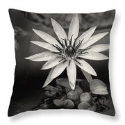 Water-lily  Throw Pillow