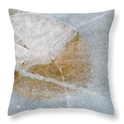 Water Lily Leaf In Ice, Boggy Lake Throw Pillow