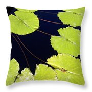 Water Lily Pads And Bloom Throw Pillow
