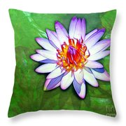 Water Lily Study Throw Pillow
