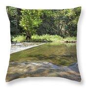 Water Over The Bridge Throw Pillow