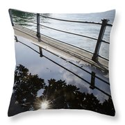 Water Puddle Throw Pillow