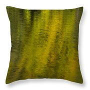 Water Reflection Abstract Autumn 1 A Throw Pillow