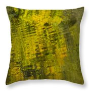 Water Reflection Abstract Autumn 1 D Throw Pillow