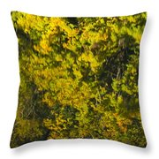 Water Reflection Abstract Autumn 1 F Throw Pillow