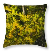 Water Reflection Abstract Autumn 1 G Throw Pillow