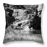 Water Rock Flower In Central Park Throw Pillow