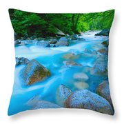 Water Rushing Through Rocks Throw Pillow