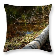 Water Seeing Throw Pillow