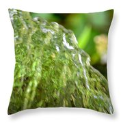Water Shell Throw Pillow