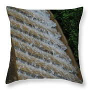 Water Steps 1 Throw Pillow