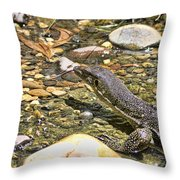 Water Tasting Throw Pillow