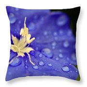 Water The Soul Throw Pillow