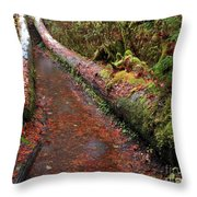 Water Trail Throw Pillow
