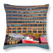 Water View One Throw Pillow