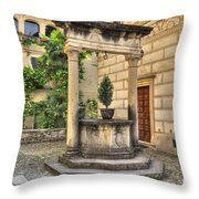 Water Well Throw Pillow