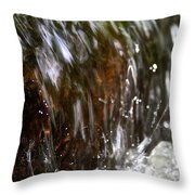 Water Wrapped Throw Pillow