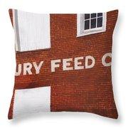 Waterbury Feed Throw Pillow