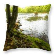 Watercolours 128 Throw Pillow